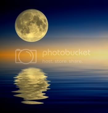 full-moon-reflection-350-px.jpg Full Moon Reflection image by margerdei